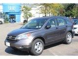 2010 Urban Titanium Metallic Honda CR-V LX AWD #70926058