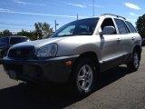 2003 Pewter Hyundai Santa Fe I4 #71010497