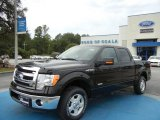 2013 Kodiak Brown Metallic Ford F150 XLT SuperCrew #71062658