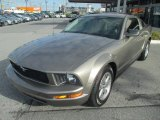 2005 Mineral Grey Metallic Ford Mustang V6 Deluxe Coupe #71063037