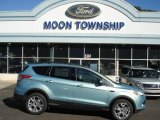 2013 Frosted Glass Metallic Ford Escape SE 1.6L EcoBoost 4WD #71062748
