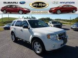 2009 White Suede Ford Escape XLT V6 4WD #71132750