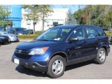 2009 Royal Blue Pearl Honda CR-V LX 4WD #71132689