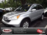 2009 Alabaster Silver Metallic Honda CR-V EX-L #71193937