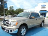2013 Pale Adobe Metallic Ford F150 XLT SuperCrew #71275005