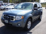 2010 Steel Blue Metallic Ford Escape XLT #71274804