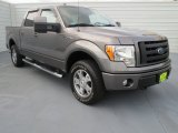 2010 Sterling Grey Metallic Ford F150 FX4 SuperCrew 4x4 #71383791