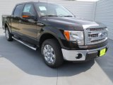2013 Kodiak Brown Metallic Ford F150 XLT SuperCrew #71383782