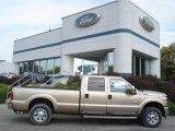 2012 Pale Adobe Metallic Ford F250 Super Duty XLT Crew Cab 4x4 #71434496