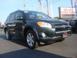 2010 Black Forest Pearl Toyota RAV4 Limited V6 4WD #71435087