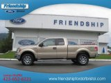 2012 Pale Adobe Metallic Ford F150 XLT SuperCab 4x4 #71434558