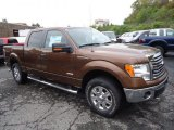 2012 Golden Bronze Metallic Ford F150 XLT SuperCrew 4x4 #71531194