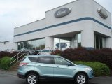 2013 Frosted Glass Metallic Ford Escape SE 2.0L EcoBoost 4WD #71530994