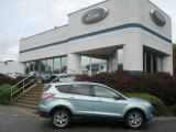 2013 Frosted Glass Metallic Ford Escape SEL 2.0L EcoBoost 4WD #71530991