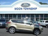 2013 Ginger Ale Metallic Ford Escape SEL 1.6L EcoBoost 4WD #71531371