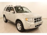 2009 Light Sage Metallic Ford Escape Limited V6 4WD #71634118