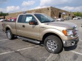 2013 Pale Adobe Metallic Ford F150 XLT SuperCab 4x4 #71819349