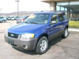 2006 Sonic Blue Metallic Ford Escape XLT V6 4WD #7151628