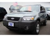 2006 Titanium Green Metallic Ford Escape XLT V6 4WD #7137080