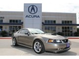 2001 Mineral Grey Metallic Ford Mustang GT Coupe #71860497