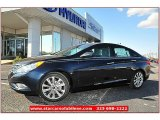 2013 Pacific Blue Pearl Hyundai Sonata SE #71860789