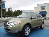 2013 Ginger Ale Metallic Ford Edge SEL #71914634