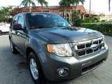 2011 Sterling Grey Metallic Ford Escape XLT #71914615