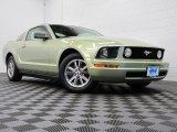 2005 Legend Lime Metallic Ford Mustang V6 Premium Coupe #71915037