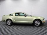 Legend Lime Metallic Ford Mustang in 2005