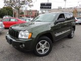 2006 Jeep Green Metallic Jeep Grand Cherokee Laredo 4x4 #72102318