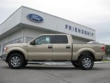 2013 Pale Adobe Metallic Ford F150 XLT SuperCrew 4x4 #72101685