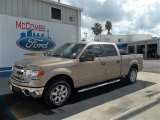 2013 Pale Adobe Metallic Ford F150 XLT SuperCrew #72159593