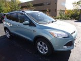 2013 Frosted Glass Metallic Ford Escape SE 1.6L EcoBoost 4WD #72159634