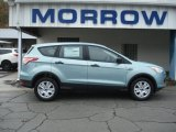 2013 Frosted Glass Metallic Ford Escape S #72203780
