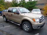 2013 Pale Adobe Metallic Ford F150 XLT SuperCrew 4x4 #72245596