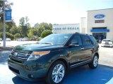 2013 Green Gem Metallic Ford Explorer Limited #72346666