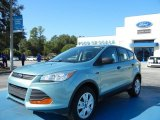 2013 Frosted Glass Metallic Ford Escape S #72346674