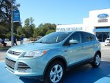 2013 Frosted Glass Metallic Ford Escape SE 2.0L EcoBoost #72346673