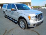 2010 Ingot Silver Metallic Ford F150 XLT SuperCrew #72398224