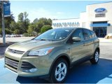 2013 Ginger Ale Metallic Ford Escape SE 1.6L EcoBoost #72397725