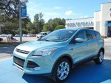 2013 Frosted Glass Metallic Ford Escape SEL 2.0L EcoBoost #72397724