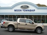 2012 Pale Adobe Metallic Ford F150 XLT SuperCrew 4x4 #72397886