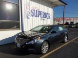 2013 Pacific Blue Pearl Hyundai Sonata SE #72469867