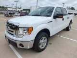 2012 Ford F150 XLT SuperCrew Data, Info and Specs