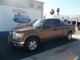 2012 Golden Bronze Metallic Ford F150 XLT SuperCab #72522027