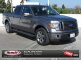 2010 Sterling Grey Metallic Ford F150 FX2 SuperCrew #72522070