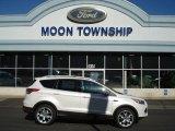 2013 White Platinum Metallic Tri-Coat Ford Escape Titanium 2.0L EcoBoost 4WD #72551397