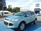2013 Frosted Glass Metallic Ford Escape SEL 2.0L EcoBoost #72705833