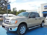 2013 Pale Adobe Metallic Ford F150 XLT SuperCrew #72705826