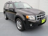 2009 Black Ford Escape XLT V6 #72766384